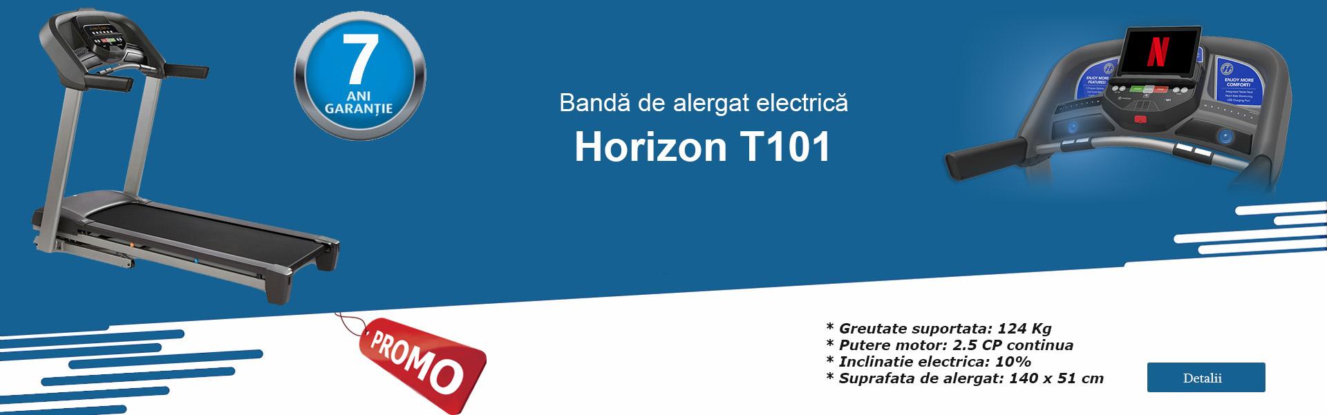 Horizon T101
